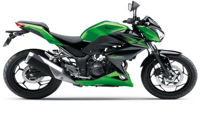 Kawasaki Z300 2015 Onwards